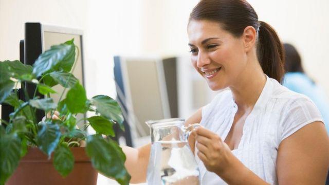 Una mujer con una jarra de agua y una planta sobre su escritorio, sonriendo