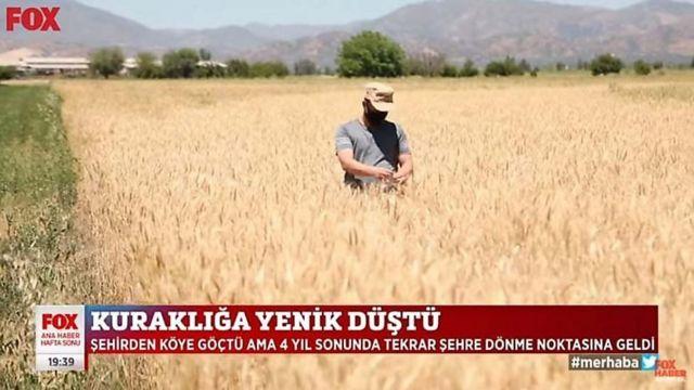 شبکههای خبری ترکیه اغلب بر تاثیرات خشکسالی روی کشاورزی تمرکز دارند