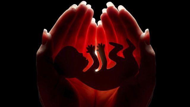 Эмбрион на фоне женских рук