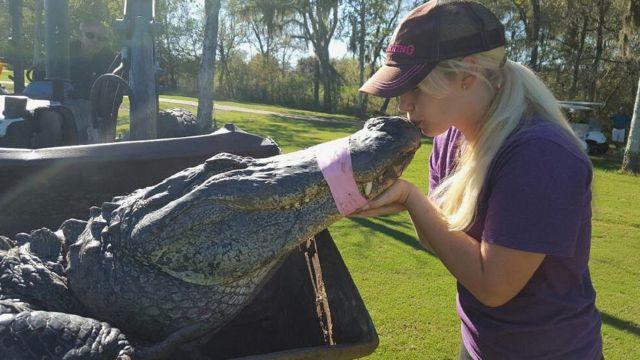 Christy Kroboth kissing a captured alligator