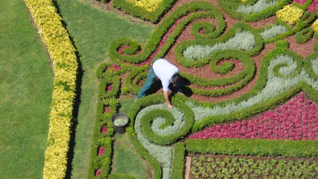 Un jardinero en su trabajo