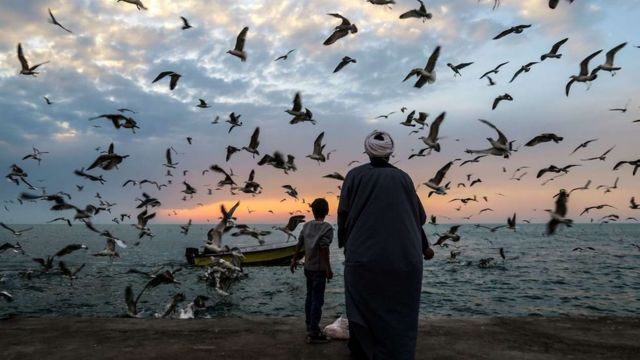 آرامش در شمال/ عکس عباس حیدری