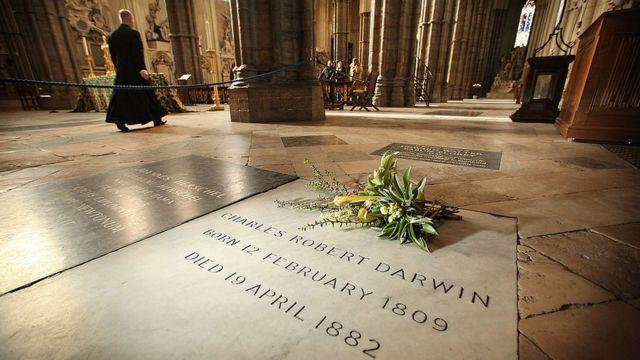 Tumba de Charles Darwin en la Abadía de Westminster.