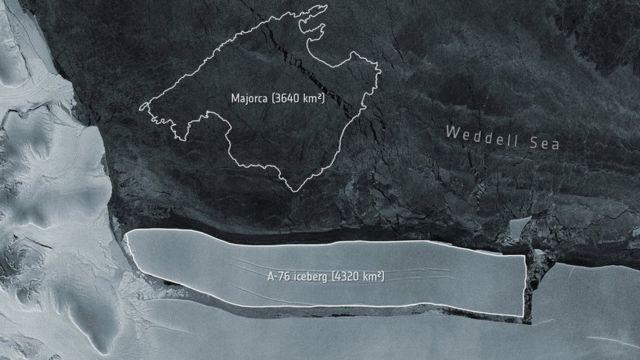 Weddell deniz