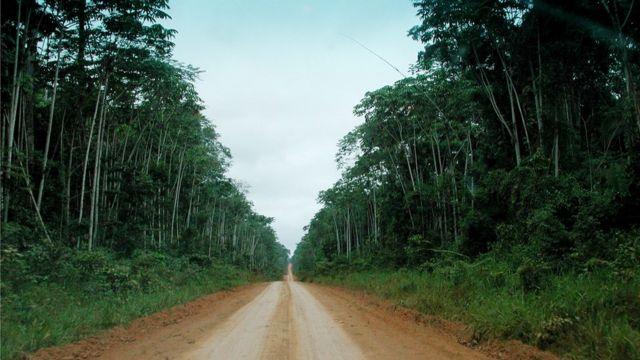 Estrada em Rondônia