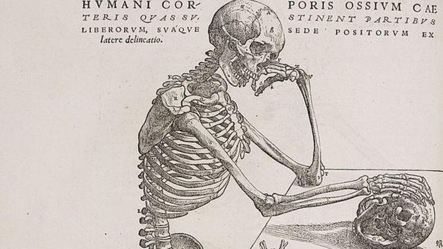 Gravura de Andreas Versalius de um esqueleto