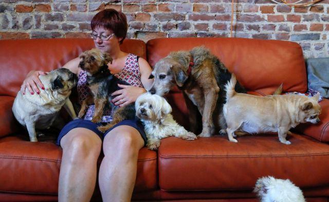 Valeri Liks vodi starački dom za životinje