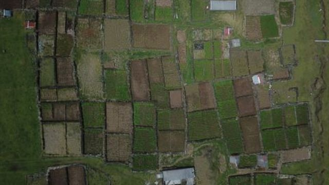 """Aerial view of """"the patches"""""""