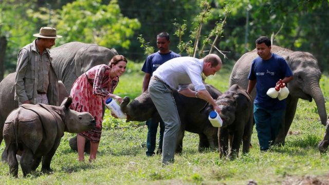 Prince William and the Duchess of Cambridge feed baby elephants at the Centre for Wildlife Rehabilitation and Conservation (CWRC) at Panbari reserve forest in Kaziranga,