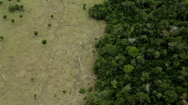 Deforestation in the state of Mato Grosso.