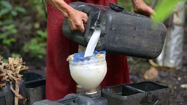 شیره نخل نارگیل