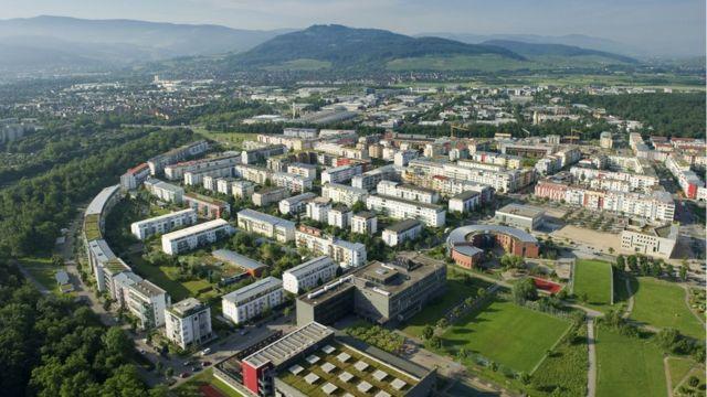 Riesefeld (Foto: Frey Gruppe)