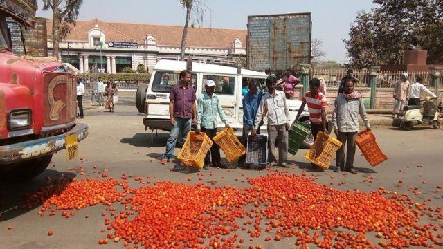 केउनझार में सोमवार को कई किसानों ने कलेक्टर कार्यालय के सामने सड़क पर टमाटर फेंक कर प्रदर्शन किया.
