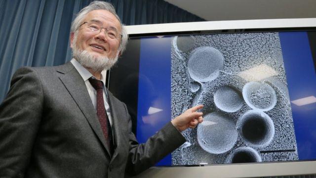 پروفسور یوشینوری اسومی