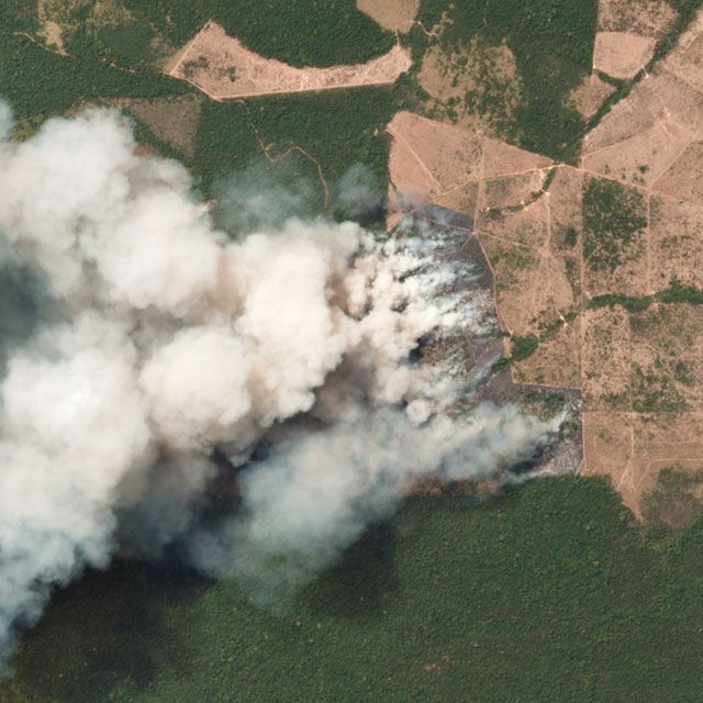 Satellite image of wildfires in Pará, Brazil
