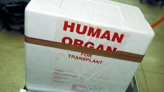 В Украине около 5 тыс. человек нуждаются в пересадке органов