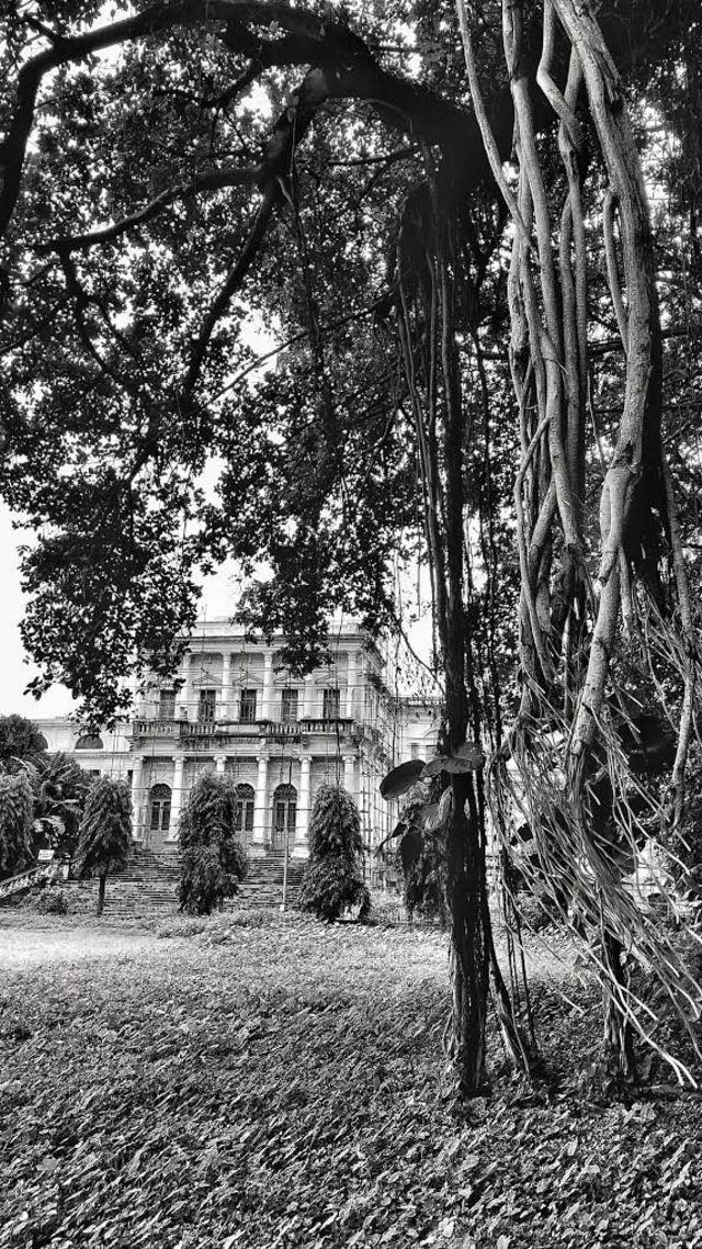 बेल्वेडेयर हाउस