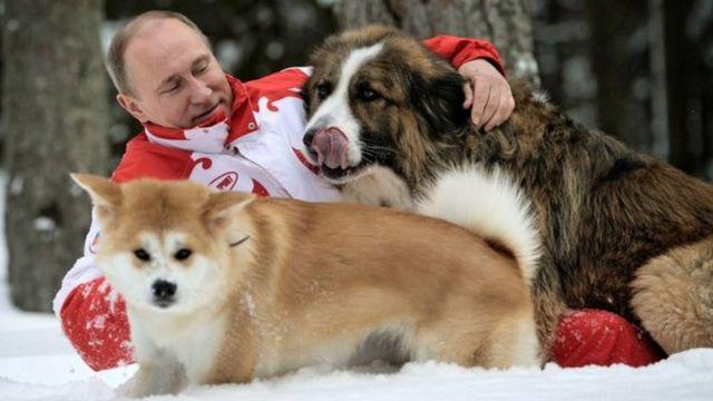 रूसी राष्ट्रपति व्लादिमिर पुतिन