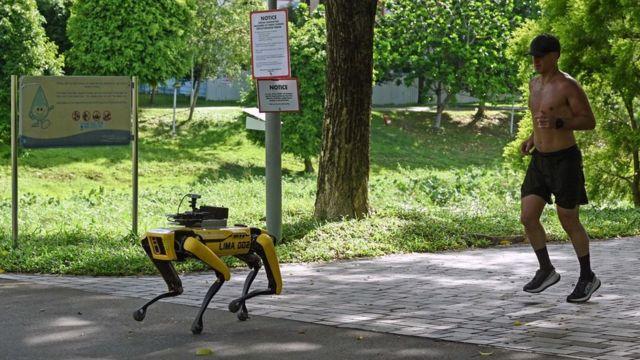 Cachorro robô em parque de Cingapura