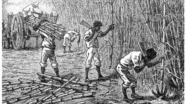 Ilustração de homens escravizados cortando cana de açúcar
