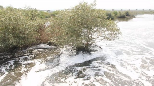 آلودہ پانی