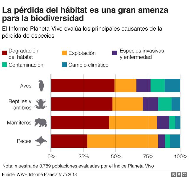 Gráfico pérdida de hábitat natural.
