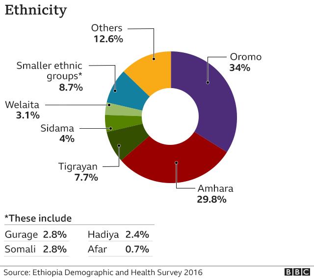 Pi chart showing ethnic make-up