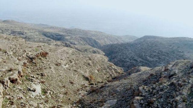 इराकमधील पर्वतरांगा