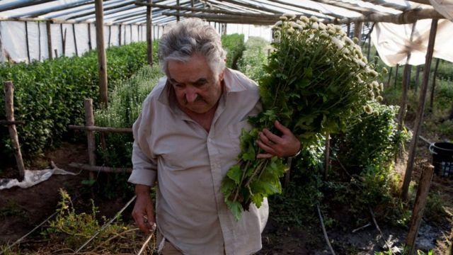 Mujica en su huerto.