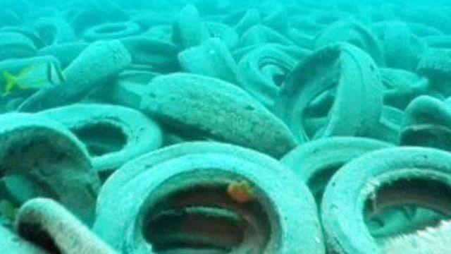حماية البيئات البحرية