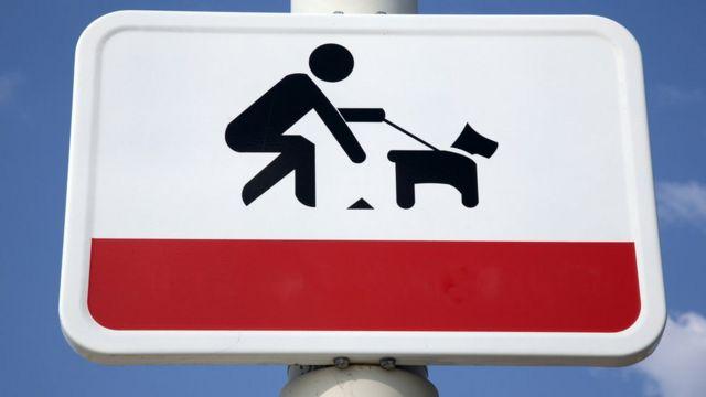 """Знак """"Убирайте за вашей собакой"""""""