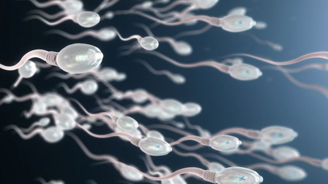 Ilustración de espermatozoides