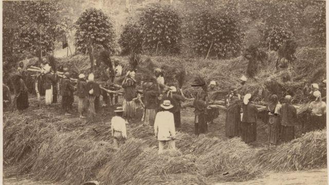 Trabalhadores escravizados observados por feitor em 1865