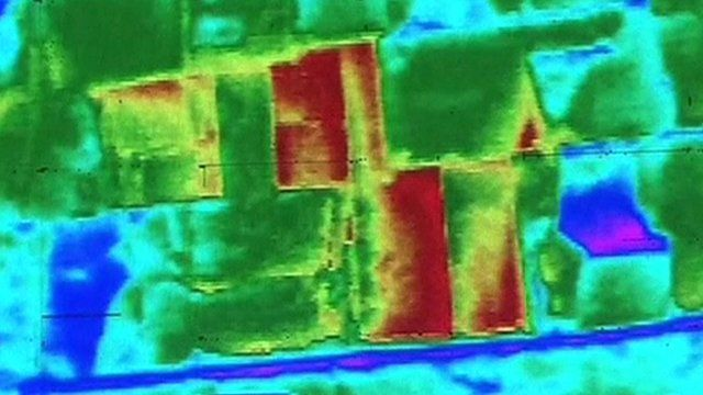 Thermal scan of the pyramid