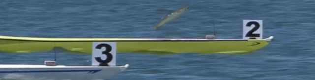 fish soaring out of water between rowing boats