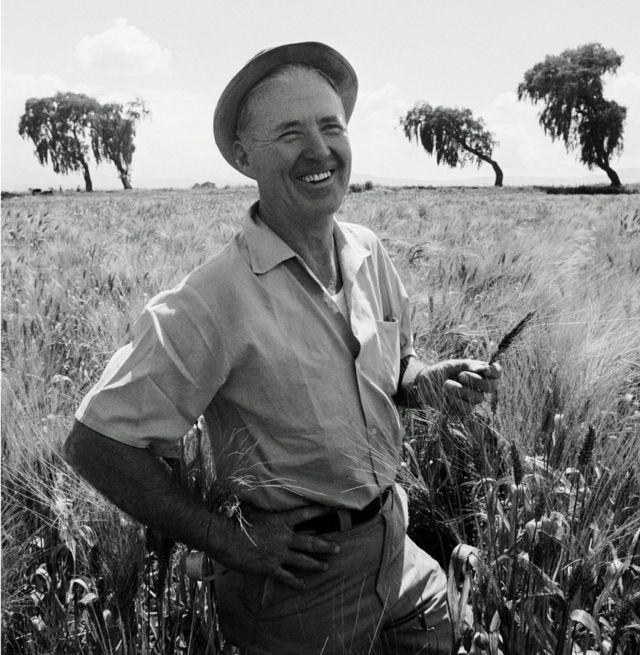 Norman Borlaug en un campo de trigo en Toluca, México