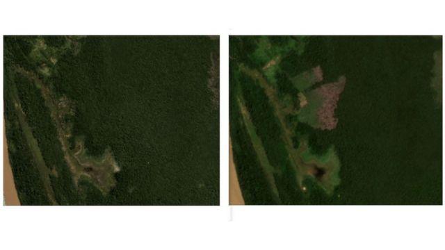 Imagens de satélite mostram desmatamento em lote anunciado no Facebook