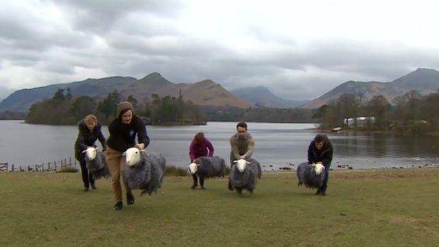'sheep puppets' in Keswick