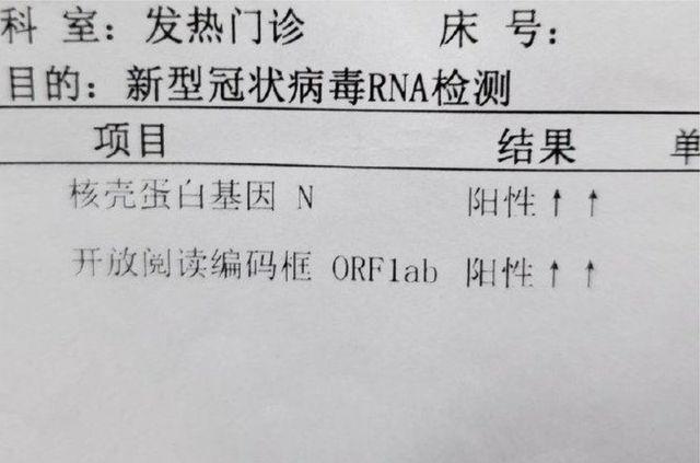 小葉的新型冠軍狀病毒RNA檢測結果