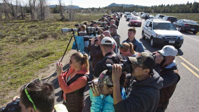 Turistas en el parque Grand Teton.