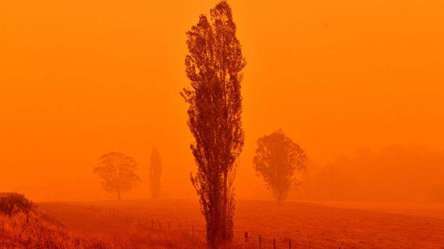 Incendio en Nueva Gales del Sur