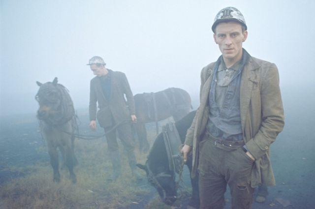 Даремські шахтарі зі своїми робочими поні, 1965 р.