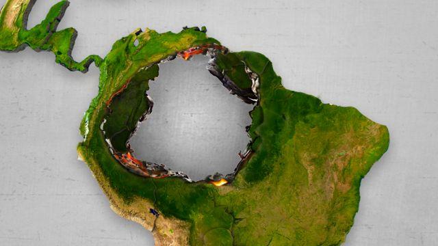 Ilustração Amazônia