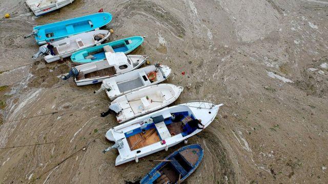 """Imagem aérea mostra barcos encalhados em """"muco do mar"""""""