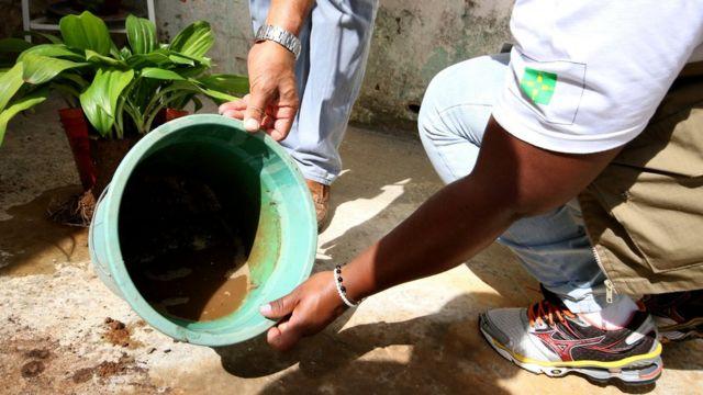Ação contra o mosquito aedes aegypti