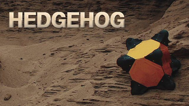 The hedgehog robot