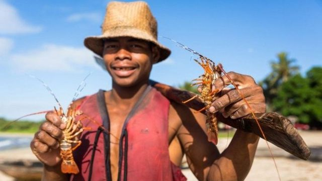 Merlin shows off his catch, these small lobsters are hard to sell and will often be eaten by the locals