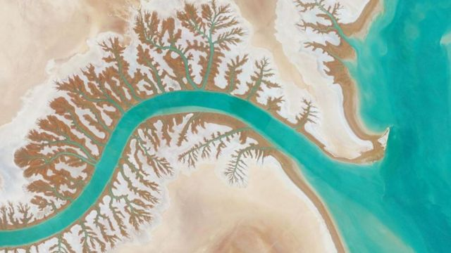Laguna Shadegan, Iran