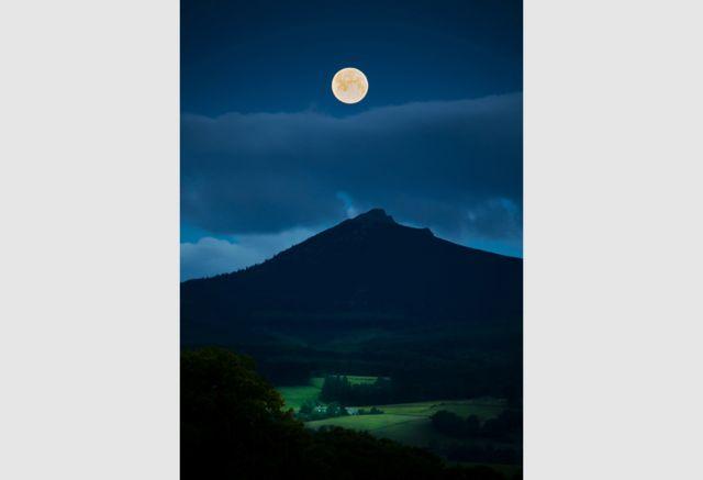 A Midsummer Night's Dream by Nikki Munro