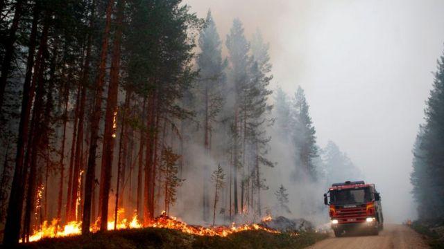 Požari su ovog leta pogodili i Švedsku